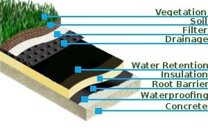 A Green Roof Provides Versatile Benefits